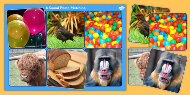 Initial b Sound Photo Matching Board and Cards - sounds, phonics