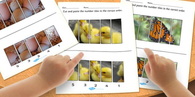Spring Photo Number Sequencing Puzzle - spring, puzzle, number