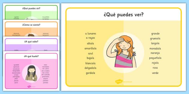 ¿Qué puedes ver? - spanish, senses, the senses, our senses, ourselves, sounds wordmat, feel word mat, taste word mat, smell word mat, touch word mat, senses words