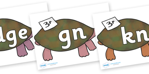 Silent Letters on Turtle to Support Teaching on The Great Pet Sale - Silent Letters, silent letter, letter blend, consonant, consonants, digraph, trigraph, A-Z letters, literacy, alphabet, letters, alternative sounds