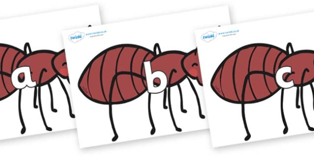 Phase 2 Phonemes on Ants - Phonemes, phoneme, Phase 2, Phase two, Foundation, Literacy, Letters and Sounds, DfES, display