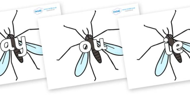 Phase 5 Phonemes on Crane Flies - Phonemes, phoneme, Phase 5, Phase five, Foundation, Literacy, Letters and Sounds, DfES, display