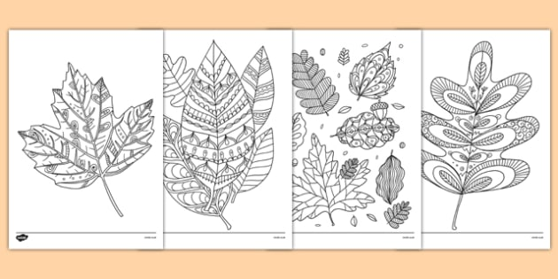 Autumn Themed Mindfulness Colouring Sheets - australia, autumn, mindfulness, colouring
