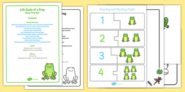 Life Cycle of a Frog Quiet Time Box Quiet Time Box