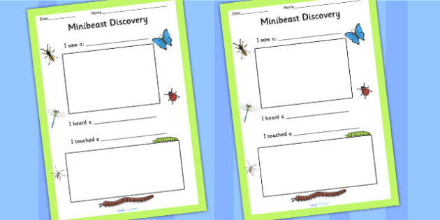 Minibeast Discovery Writing Frame - minibeast, writing, write