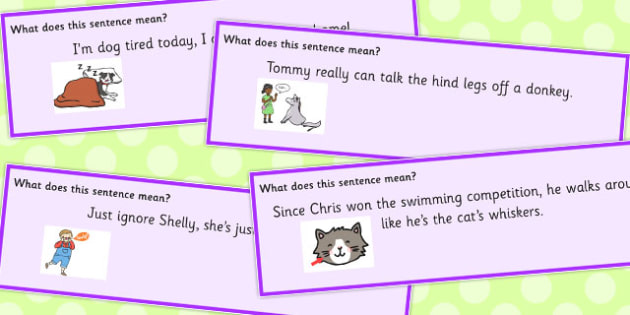 Animal Idioms Sentences Set 3 - animal, idioms, sentences, set 3