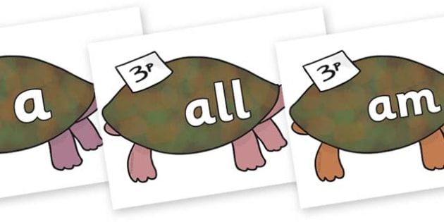Foundation Stage 2 Keywords on Turtle to Support Teaching on The Great Pet Sale - FS2, CLL, keywords, Communication language and literacy,  Display, Key words, high frequency words, foundation stage literacy, DfES Letters and Sounds, Letters and Soun
