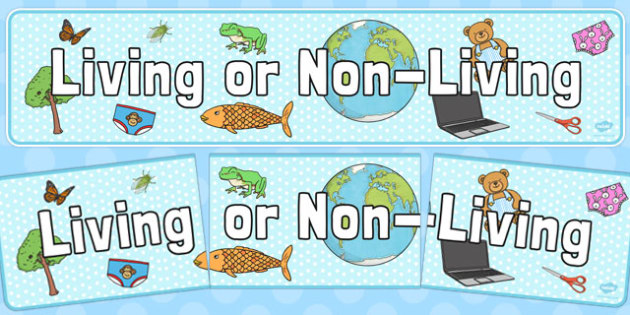 Living or Non-Living Display Banner - living, non-living, display banner