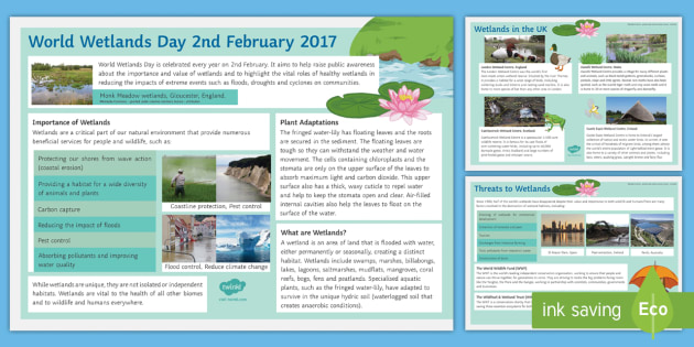 World Wetlands Day (2nd February 2017) Display Facts Posters - KS3/4 World Wetlands Day, biology, ecology.
