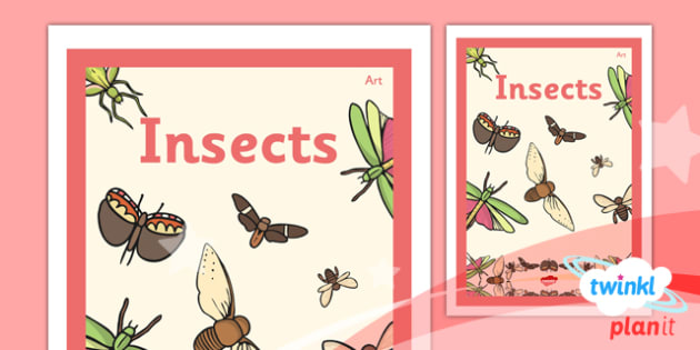 PlanIt - Art LKS2 - Insects Unit Book Cover - planit, book cover, art and design, art, lks2, insects
