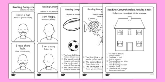 Reading Comprehension Activity Sheets English/Polish