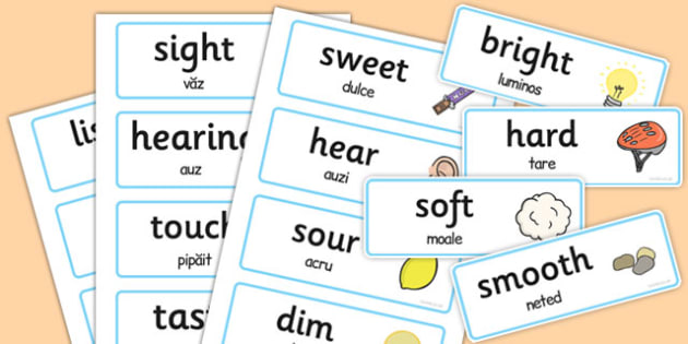 Senses Topic Words Romanian Translation - romanian, senses, topic, words, cards