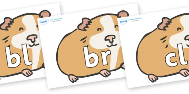 Initial Letter Blends on Guinea Pigs - Initial Letters, initial letter, letter blend, letter blends, consonant, consonants, digraph, trigraph, literacy, alphabet, letters, foundation stage literacy