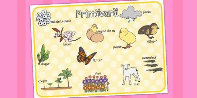 Primavara, Plansa cu imaginii si cuvinte, Romanian