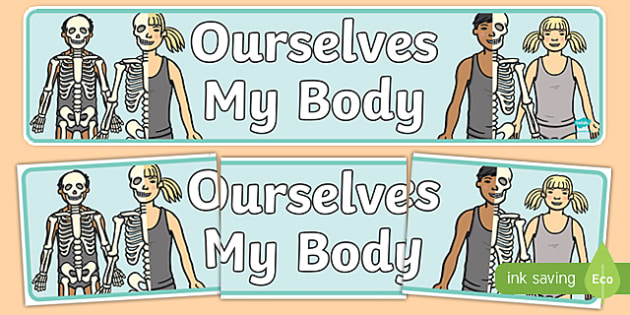 Ourselves: My Body Display Banner