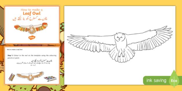 Leaf Owl Craft Instructions Urdu Translation - urdu, Autumn, seasons, september, october, topics, ks1, harvest, hibernation, reception, EYFS, owl, animal, forest, craft, leaves, leaf