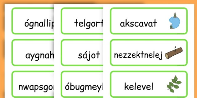 Life Cycle Word Cards - life cycles, lifecycle, visual aid, words - Hungarian