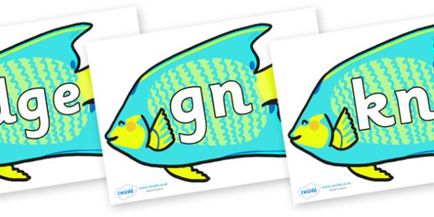 Silent Letters on Angel Fish - Silent Letters, silent letter, letter blend, consonant, consonants, digraph, trigraph, A-Z letters, literacy, alphabet, letters, alternative sounds
