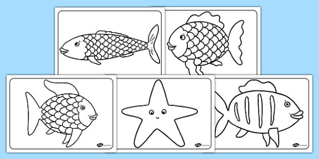 Colouring Sheets to Support Teaching on The Rainbow Fish - The Rainbow Fish, Marcus Pfister, resources, Rainbow Fish, PSHE, PSE, octopus, shimmering scales, starfish, friendship, under the sea, sea, story, story book, story book resources, story sequ