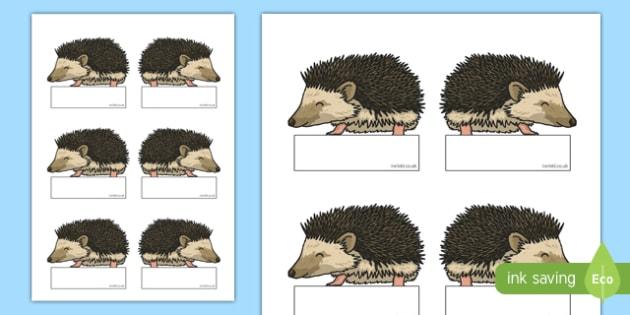 Hedgehog Editable Self Registration - hedgehog, editable, self-registration