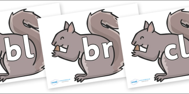 Initial Letter Blends on Grey Squirrels - Initial Letters, initial letter, letter blend, letter blends, consonant, consonants, digraph, trigraph, literacy, alphabet, letters, foundation stage literacy