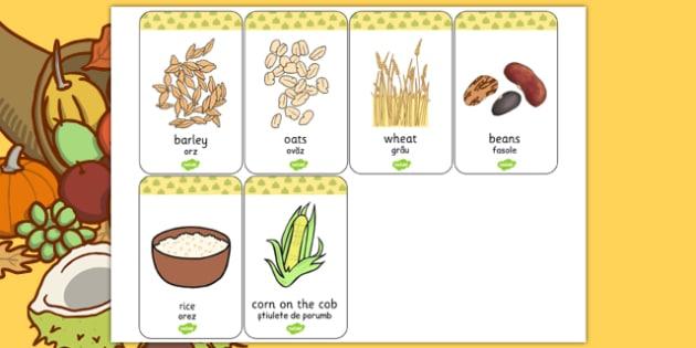 Harvest Grains Flash Cards Romanian Translation - romanian, harvest