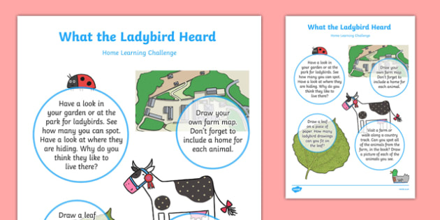 Home Learning Challenge Sheet Nursery FS1 to Support Teaching on What the Ladybird Heard