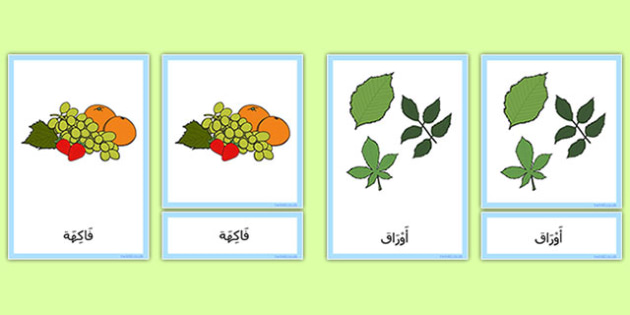 النباتات والنمو - النمو، نباتات، أشجار، علوم، إنبات، تشجير