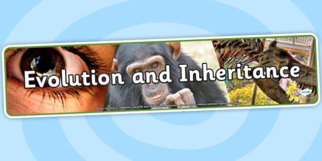 Evolution and Inheritance Photo Display Banner - evolution, inheritance, photo display banner, display banner, banner, photo banner, display header, header