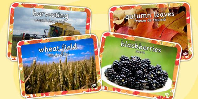 Autumn Display Photos Romanian Translation - romanian, autumn, display, photos