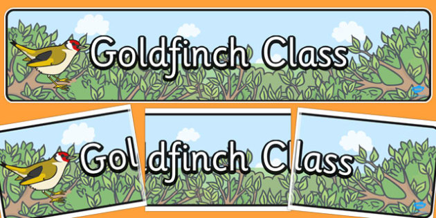 Gold Finch Themed Classroom Display Banner - display, banner