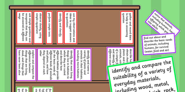 2014 Curriculum Year Science Assessment Bookshelf Editable Target