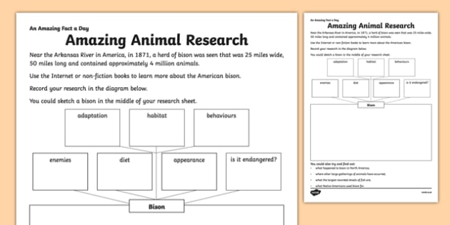 Amazing Animal Research Activity Sheet - amazing fact a day, activity sheet, activity, activities, animal research, worksheet