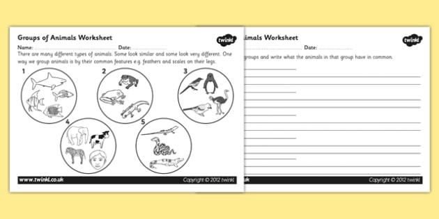 Animal Groups Worksheet - animals, living things, classifying animals, grouping animals, animals worksheet, fish reptiles and mammals, science worksheet