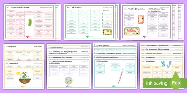 AQA Biology Word Mats - Word Mat, biology, DNA, genes