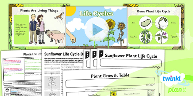 PlanIt - Science Year 2 - Plants Lesson 3: Life Cycles Lesson Pack