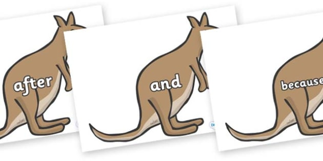 Connectives on Kangaroos - Connectives, VCOP, connective resources, connectives display words, connective displays