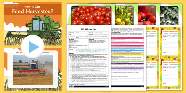 Harvest Food Tasting EYFS Adult Input Plan And Resource Pack - activity