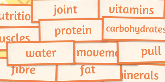 Year 3 Animals Including Humans Scientific Vocabulary cards