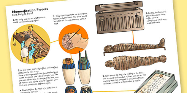 The Ancient Egyptians Mummification Information Print Out