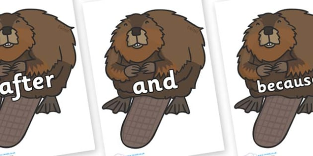 Connectives on Beavers - Connectives, VCOP, connective resources, connectives display words, connective displays