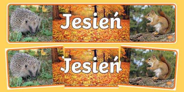 Banner ze zdjęciami Jesień po polsku