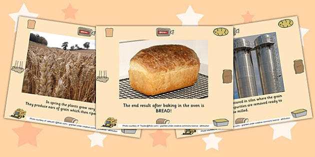 The Journey of Bread PowerPoint - bread, powerpoint, information
