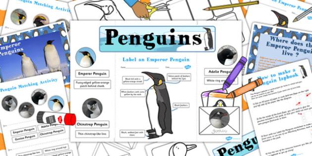 Penguin Lapbook Creation Pack - penguin, lapbooks, pack, home