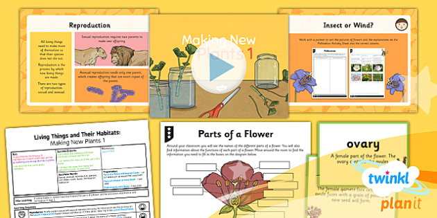 PlanIt - Science Year 5 - Living Things and Their Habitats Lesson 1: Making New Plants 1 Lesson Pack - reproduction, sexual, pollination, fertilisation
