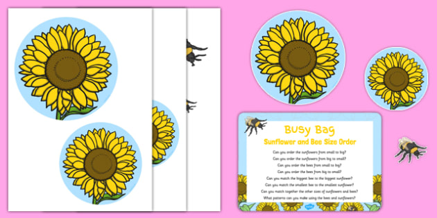 Sunflower and Bee Size Order Busy Bag Prompt Card and Resource Pack - pattern, maths