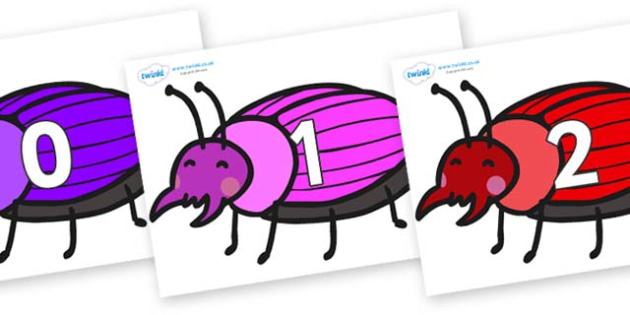 Numbers 0-31 on Beetles - 0-31, foundation stage numeracy, Number recognition, Number flashcards, counting, number frieze, Display numbers, number posters