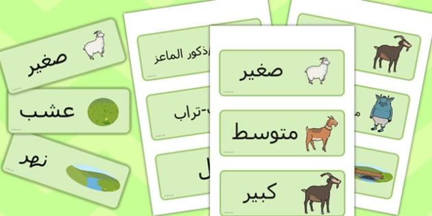بطاقات كلمات التيوس الثلاثة -  الماعز الثلاثة، التيوس الثلاثة