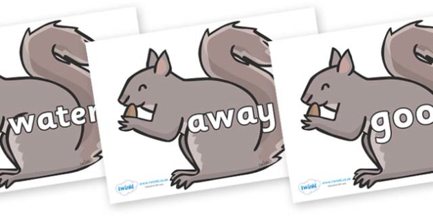 Next 200 Common Words on Grey Squirrels - Next 200 Common Words on  - DfES Letters and Sounds, Letters and Sounds, Letters and sounds words, Common words, 200 common words