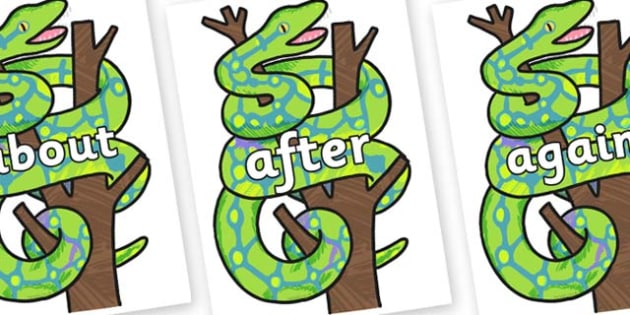 KS1 Keywords on Boa Constrictor to Support Teaching on The Bad Tempered Ladybird - KS1, CLL, Communication language and literacy, Display, Key words, high frequency words, foundation stage literacy, DfES Letters and Sounds, Letters and Sounds, spelli